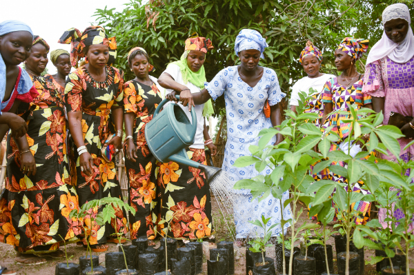 A women's group working together in Senegal