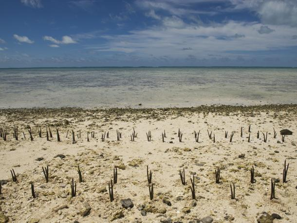 Effects of climate change on the Pacific island nation of Kiribati