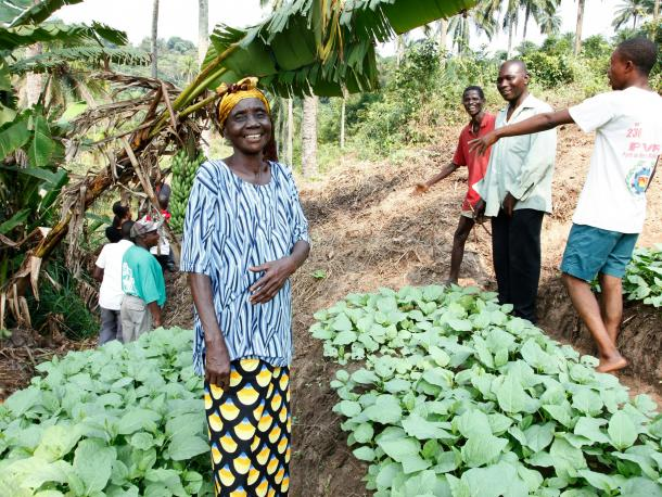 A community farming group at work in DRC.