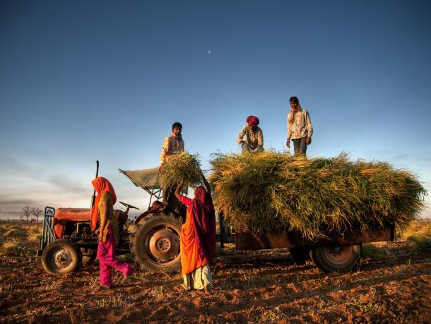 farmers in India