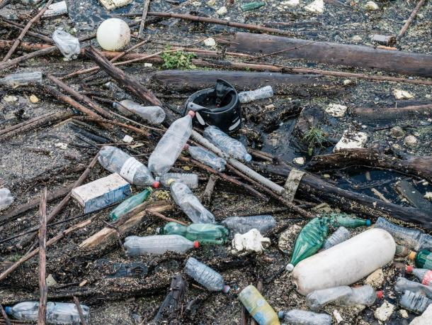 Plastic bottles amid wood and other waste