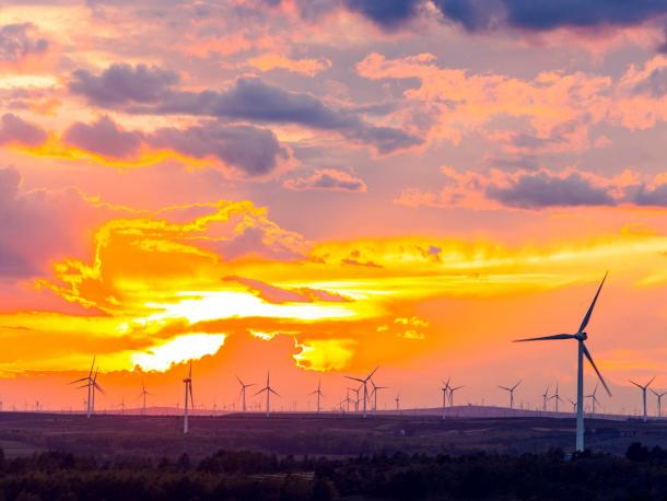 windmill farm at sunset